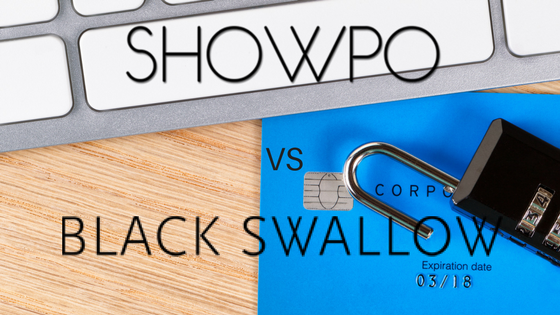 Data Security – Show Pony Group Pty Ltd v Black Swallow Boutique Pty Ltd & Ors